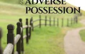 Concepts in Property Law: Adverse Possession